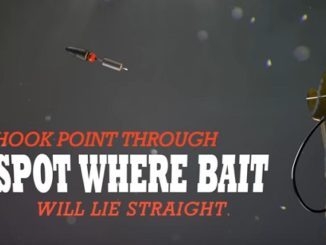 Tricks, Tips and Tactics to Catch More Fish 2