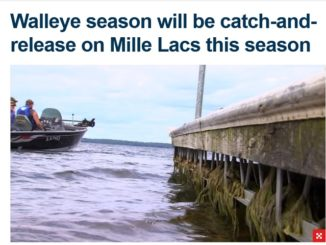 Mille Lacs Is Catch and Release Only