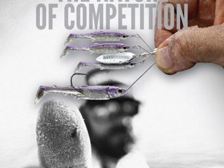 The Nature of Competition