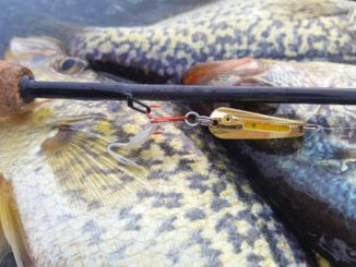 Try Northland Glo-Shot Spoons for Crappies