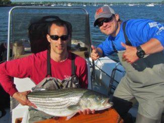 Hudson River Striper Program 1