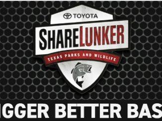 Toyota Sharelunker Program Welcomes Big Bass