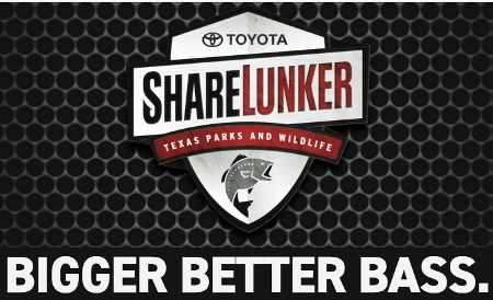 Toyota Sharelunker Program Welcomes Big Bass