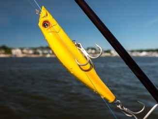 Hydro Minnow LC Was Debuted At ICAST