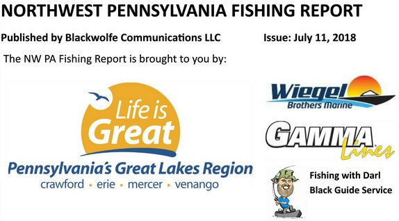 Nw pa fishing report for early july 2018 for Nw fishing report