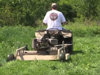 North America food plots