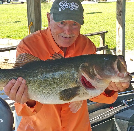 MyFWC - Shiners and Structure For Bass