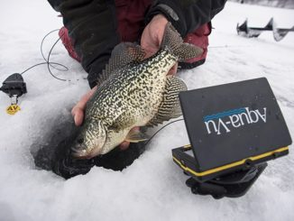 The Evolving Game of Sight-Fishing on Ice
