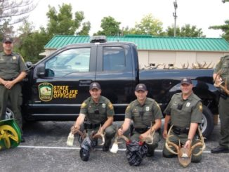 Major Fish and Wildlife Poaching Ring Shut Down