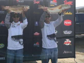 Team Wilson-Wilson Wins IFA Redfish Tour Event at Lafitte, Louisiana