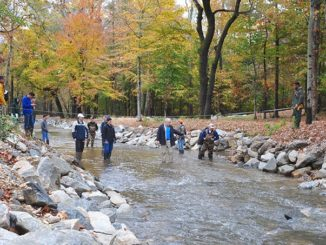Virginia town partners with Randolph-Macon College to restore local stream