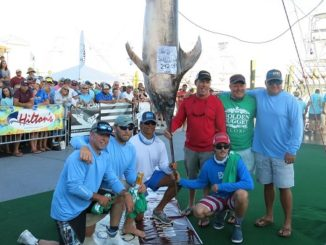 Inaugural Swordfish Cup To Be Held Globally in July