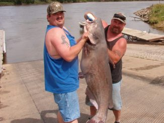 Iowa DNR - Ice-out channel catfish are biting