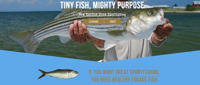 Sportfishing Groups Call for Science-Based Management of Gulf Menhaden