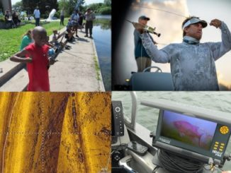 NPAA NewsBLAST - 7-5-2019