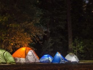 Camping 101 for the Whole Family